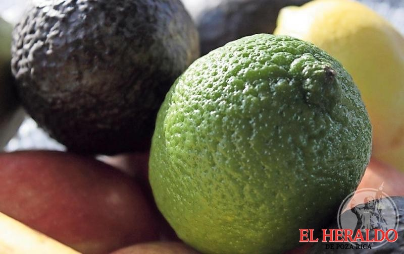 Aumentazo del 40% a limón y aguacate