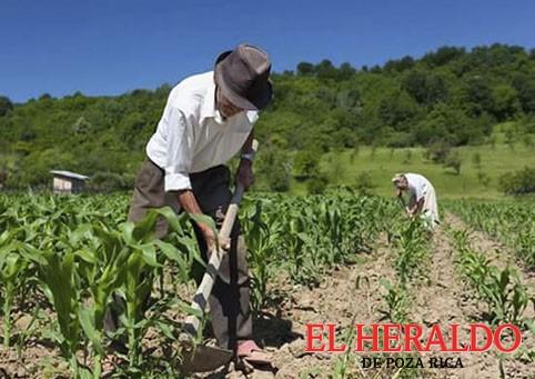 Registro Agrario Nacional estará en el ejido Coatzintla