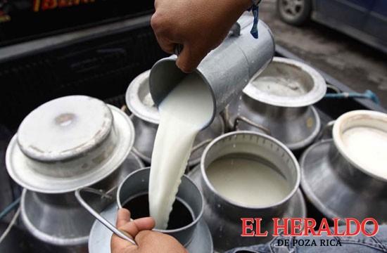 La SE prepara un examen del mercado de la leche