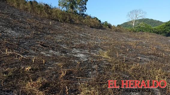Incendio amenazó zona arqueológica