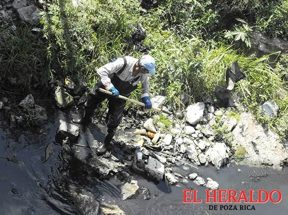 Plásticos en afluentes matan cadena de vida
