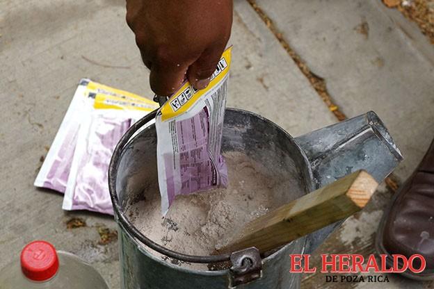 Virus comenzará a diseminarse en Veracruz: Sesver