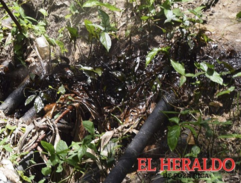 Un desastre Pemex en Dirección de Caminos