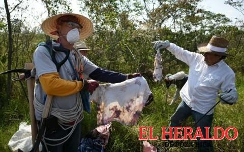 Veracruz segundo lugar en casos de desaparecidos